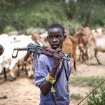 Cattle Rustlers Rampage In Nigeria